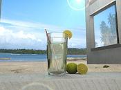 limonada-limonada1.jpg