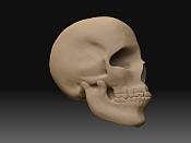 Reconstruccion fisonomica de momias   -render-calavera-con-referencia-2-nivel-de-detalle-8.1-2.jpg