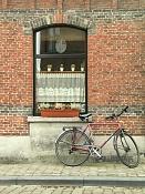 Fotos Urbanas-bicicleta-brujas.jpg