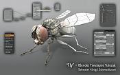 VideoTutoriales, tutoriales escritos y mas para Blender-fly_tutorial.jpg