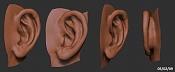Bodypart Training-ear_01_050209.jpg
