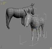 Un burro-burro01.jpg
