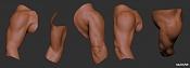 Bodypart Training-upperarm_01_020709.jpg