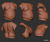 Bodypart Training-torso_01_021109.jpg