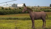 Caballo en zbrush-caballo-copy.jpg