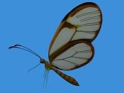 textura de Mariposa              -1.jpg