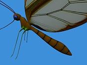textura de Mariposa              -2.jpg