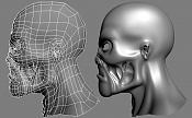 Cabeza de zombie-cabeza_zombie_wire2.jpg