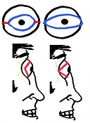 aprendiendo a animar-ojojo.jpg