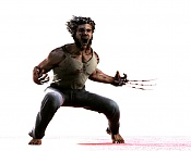 Wolverine-17.jpg