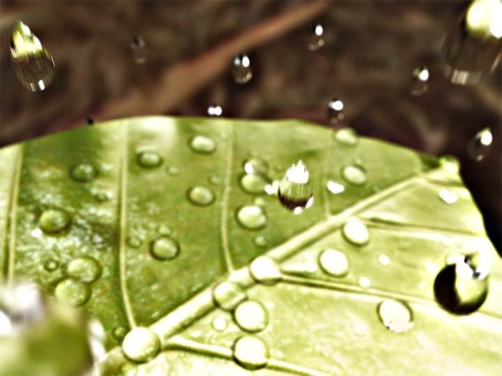 Rain drops - Gotas de lluvia-gotas-de-lluviagotas-de-lluvia_0.jpg