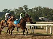 Race to Win-caballocorriendocopy.jpg