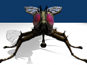 Insecto inventado-render_frente.png
