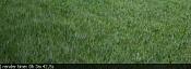 Iluminacion Vray en exteriores-grass-.jpg