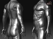 Sculpting-torsook.png